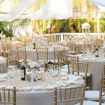 Chiavari Chair Hire Chivary Banquet Chair Rental